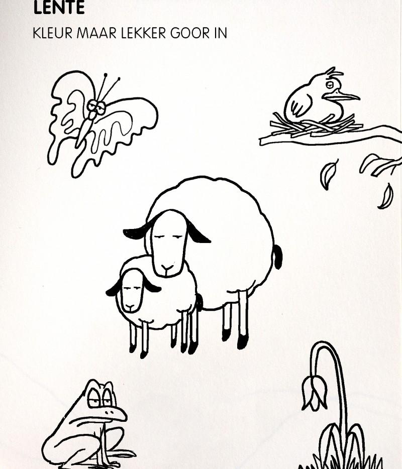 Paul Faassen Illustrations